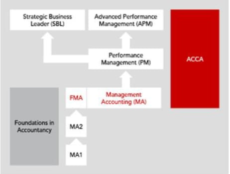 Relational diagram linking Management Accounting (MAFMA) with other exams